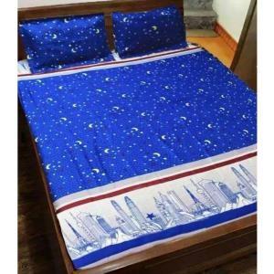 C Discount - Bo ga trai giuong TTSHOP Thap xanh 1.6x2m