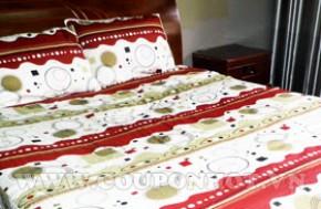 Giấc ngủ êm ái với Trọn Bộ Dra Thắng Lợi 1,6m chất lượng: