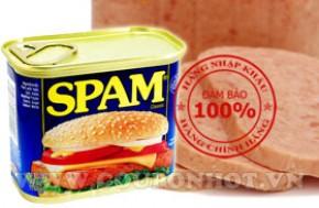 Thịt Hộp Spam Hormel Foods 340gr – Pháp