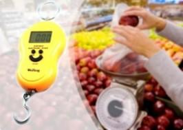 Hà Nội - Cầu Giấy: Giảm giá 41% - Cân điện tử cầm tay đa năng