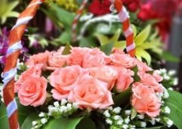 Cuc Re - Ha Noi - Hai Ba Trung: Giam gia 52% - Giam 52% khi mua hoa tai Dien Hoa Flowery - 1 - Thoi Trang va Phu Kien