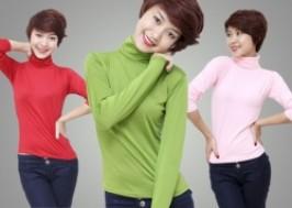 Hà Nội - Hai Bà Trưng: Giảm giá 48% - Combo 02 áo thun cổ lọ