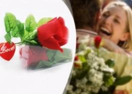 Hà Nội - Hai Bà Trưng: Giảm giá 57% - Hoa hồng biết nói