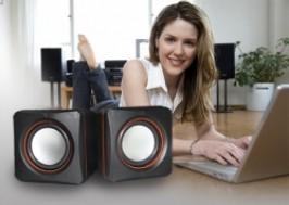 Hà Nội - Hai Bà Trưng: Giảm giá 35% - Loa 2.0 multimedia speaker