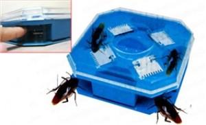 Combo 02 hộp bắt gián thông minh - diệt tận gốc côn trùng