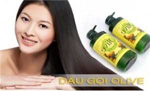 Bộ dầu gội và dầu xả OLIVE, tinh chất Olive chăm sóc mái tóc của bạn