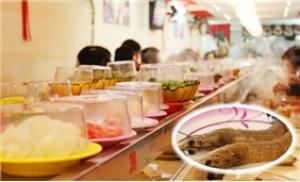 LẨU BĂNG CHUYỀN GENKI - Khám phá hương vị ẩm thực hấp dẫn, độc đáo
