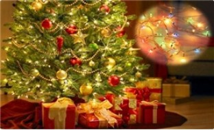 Combo 02 dây đèn nháy nhiều màu cao cấp trang trí Tết và Noel.