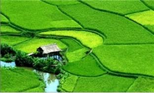 Tour du lịch Hà Nội - Mai Châu - Bản Lác - Hà Nội 02 ngày 01 đêm - 3 - Du Lịch Trong Nước - Du Lịch Trong Nước - Du Lịch Trong Nước