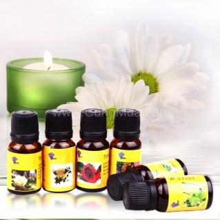Chai tinh dầu 10ml (x2 chai) - Sức khỏe và làm đẹp