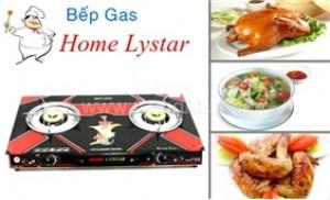 Tiết kiệm và an toàn với Bếp gas đôi mặt kính Home Lystar Model 2012
