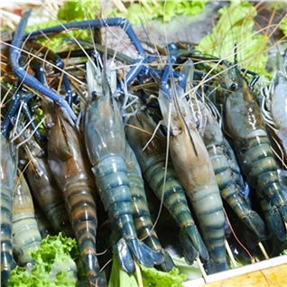 Cùng Mua - Buffet BBQ hai san, tom cang xanh - KRAUTS Garden