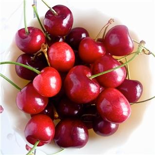 Cùng Mua - 1kg Cherry New Zealand (size 28+)Khang Thinh Fruit, giao hang