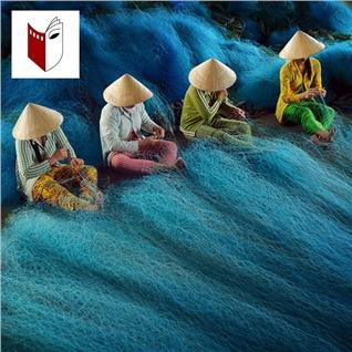 Cùng Mua - Truong San Khau Dien Anh Ha Noi - Khoa hoc nhiep anh 3 thang
