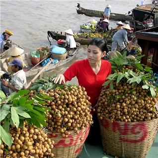 Cùng Mua - Tour kham pha mien Tay 2N1D - My Tho - Ben Tre - Can Tho