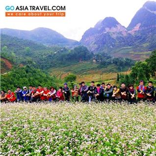 Cùng Mua - Tour Noi Bai -HN- Ha Long - Ha Giang - Mua tam giac mach 5N4D