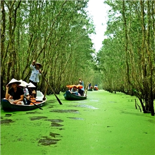 Cùng Mua - Tour Ba Lua - Rung tram Tra Su mua nuoc noi - Nghi duong 4*
