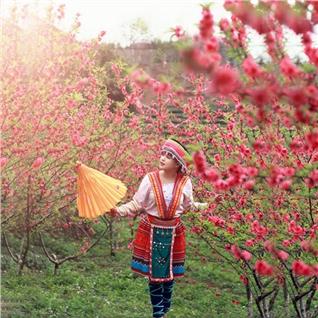 Cùng Mua - Tour Ha Noi - Sapa - Bai Dinh - Trang An 4N3D