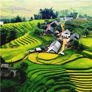 Cùng Mua - Tour Ha Noi - Lao Cai tau hoa - Sapa - Fansipan cap treo 2N3D
