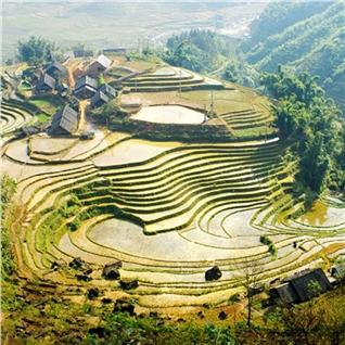 Cùng Mua - Tour Ha Noi - Sapa - Ham Rong - Fansipan (cap treo) 3N2D