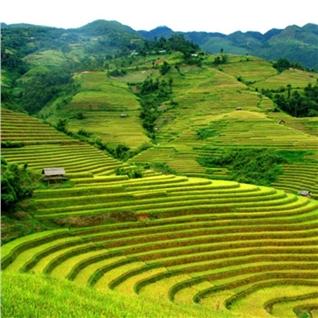 Cùng Mua - Tron goi tour du lich Mai Chau - Hoa Binh 2N1D
