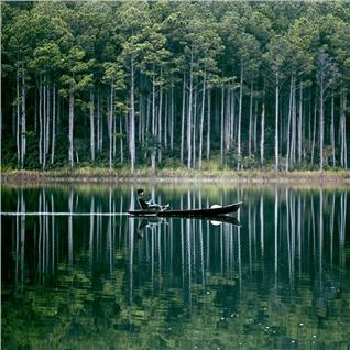 Cùng Mua - Tour Da Lat - trai nghiem vuon dau, cao nguyen Langbiang 3N3D