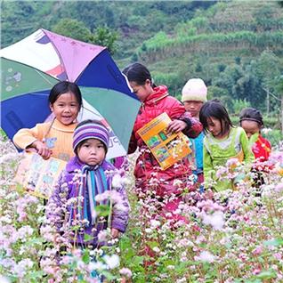 Cùng Mua - Tour HN-Ha Giang-Quang Ba-Yen Minh Mua Tam Giac Mach- HN 3N2D