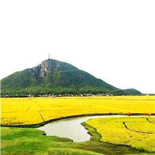 Cùng Mua - Tour Tet Phu Yen - Dai Lanh 3N3D - mui dien Cap Varella
