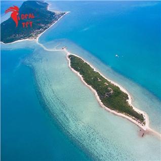 Cùng Mua - Tour Tet Diep Son - Con duong giua bien - Resort Doc Let 2N2D