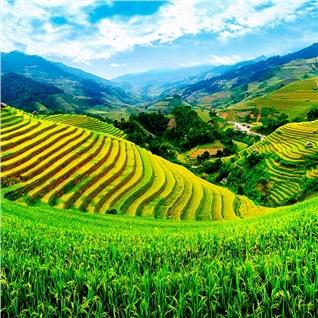 Cùng Mua - Tour mien Bac - Kham pha mien Tay Bac 9N8D