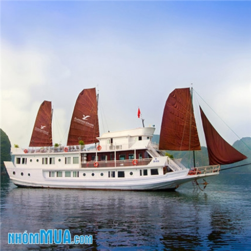 Khám phá Hạ Long du thuyền Flamingo Hạ Long 4*2N1Đ Bao gồm xe