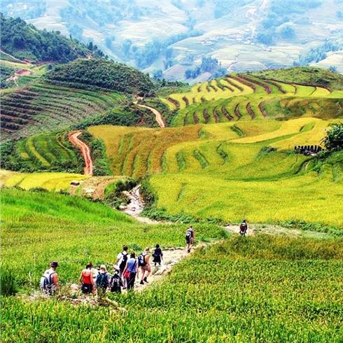 Tour du lịch khám phá Hà Nội - Lào Cai - Sapa 4N3Đ