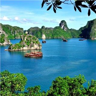 Cùng Mua - Tour ghep Ha Noi - Ha Long - Tuan Chau - 2N1D KS 3* - 4*