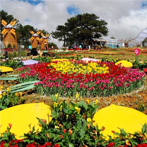 Tour Đà Lạt 3N3Đ - Tham dự Festival Hoa Đà Lạt 2017