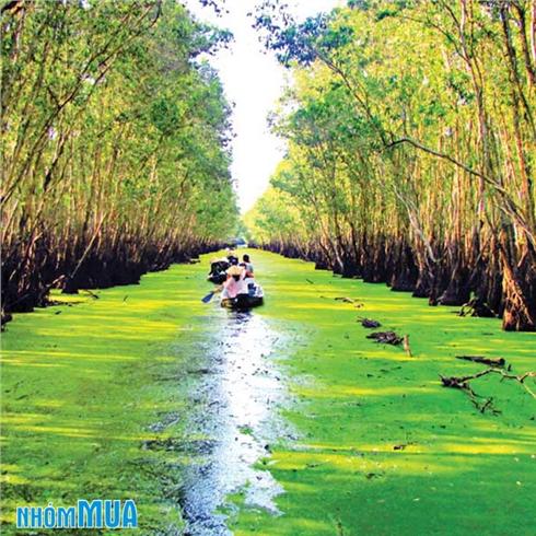 Tour An Giang - Châu Đốc - Rừng Tràm Trà Sư - Núi Cấm 2N1Đ