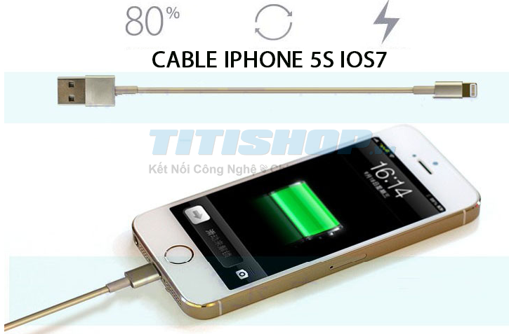 Deal1.vn - HOT Cap Sac USB Lightning Iphone 5S gold 5S iOS 7