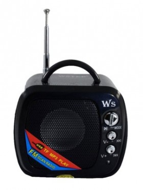 Wster WS 575 - Loa di động (đen) - WS 575
