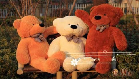 Gấu bông khổng lồ, cao 1m chỉ 270.000 đồng
