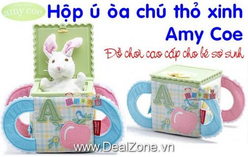 DZ793 - Hộp ú òa thỏ xinh Amy Coe
