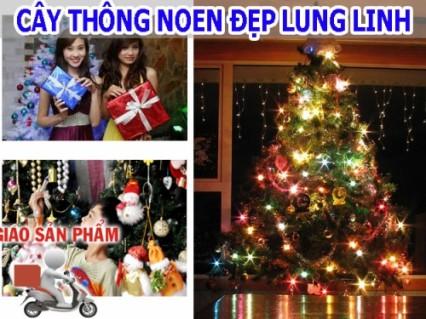 Cùng đón Giáng Sinh thật vui và rộn ràng, Chúa sẽ ban phúc lành và bình an đến mọi người trong gia đình bạn.
