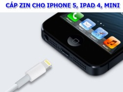Cap Zin cho iphone 5 , Ipad Mini , Ipad 4 gia re nhat san xuat theo tieu chuan chat luong cao nhat. ID486