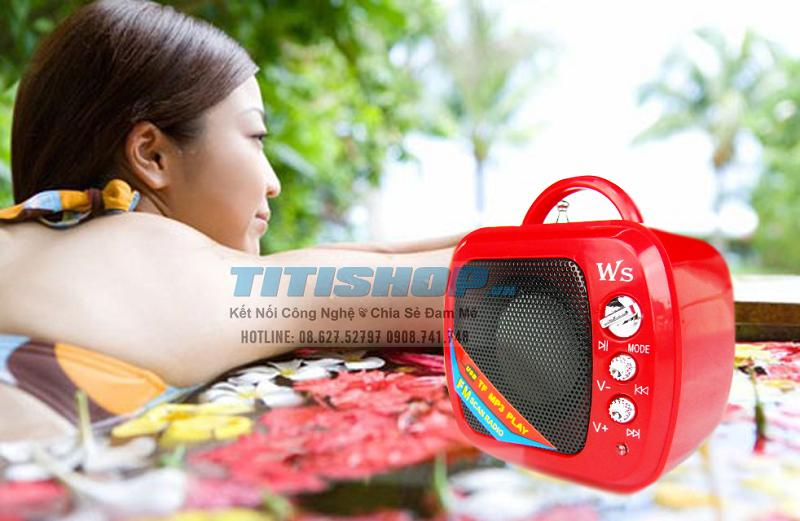 Loa mini WSTER NEW 2013 kết n..