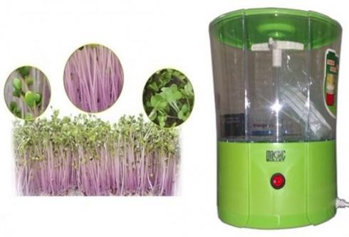 Máy trồng rau sạch Magic Bullet