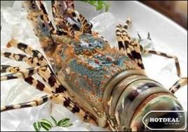 Thưởng Thức Bữa Tiệc Buffet Hải Sản Cao Cấp Với Tôm Hùm, Cá Tầm, Tu Hài Và Hơn 100 Món Hải Sản Hấp Dẫn Tại Nhà Hàng Hải Sản Seafood One. Voucher 358.000Đ Chỉ Còn 249.000Đ. Giảm 30%