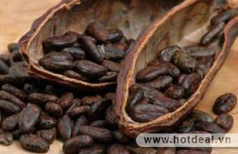 Khởi Đầu Ngày Mới Thật Tỉnh Táo Và Tràn Đầy Năng Lượng Với Combo 2 Hộp Cacao Chất Lượng Cao (Xuất Xứ Việt Nam). Sản Phẩm Trị Giá 165.000Đ Chỉ Còn 98.000Đ, Giảm 41% Tại