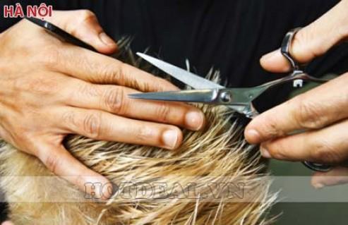 Khoác Lên Mình Vẻ Đẹp Hiện Đại Và Quyến Rũ Với Các Gói Dịch Vụ Làm Đẹp Tóc Toàn Diện Tại 3A Hair Salon Quốc Tế. Voucher Trị Giá 2.560.000Đ Chỉ Còn 199.000đ. Giảm Tới 92%