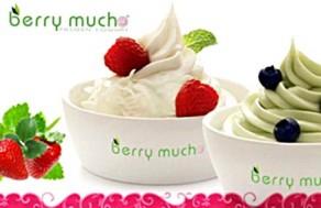 Tận Hưởng Hương Vị Ngọt Ngào Của Cuộc Sống, Thưởng Thức Yogurt Ngon Tuyệt Hảo Tại Yogurt Berry Mucho. Voucher 60.000 VNĐ, Còn 33.000 VNĐ, Giảm 45%,