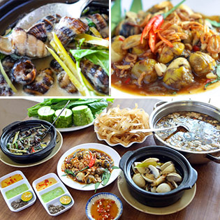 Hot Deal - Tri An Khach Hang - Set 4 Mon Oc Hap Dan Tai Quan Oc Ken