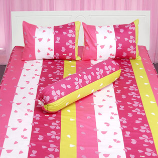 Hot Deal - Bo Drap Cotton Thang Loi 1m6 x 2m