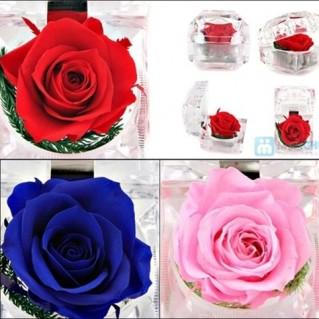 Hoa Hồng Bất Tử Venus - Hoa hồng thật 100% - 1 - Thời Trang và Phụ Kiện